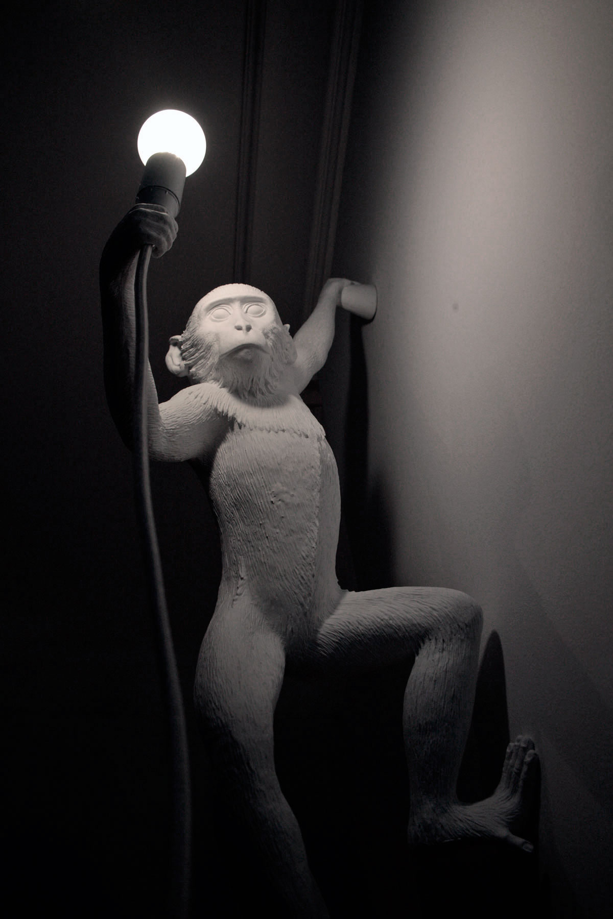 MM_Studio-appartment_light-monkey